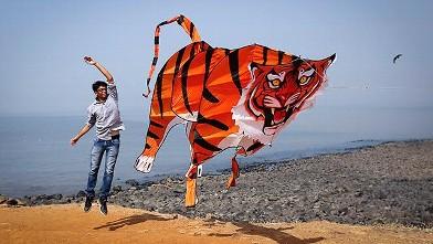 Annual Kite Flying Festival Draws Pros From Across The Globe