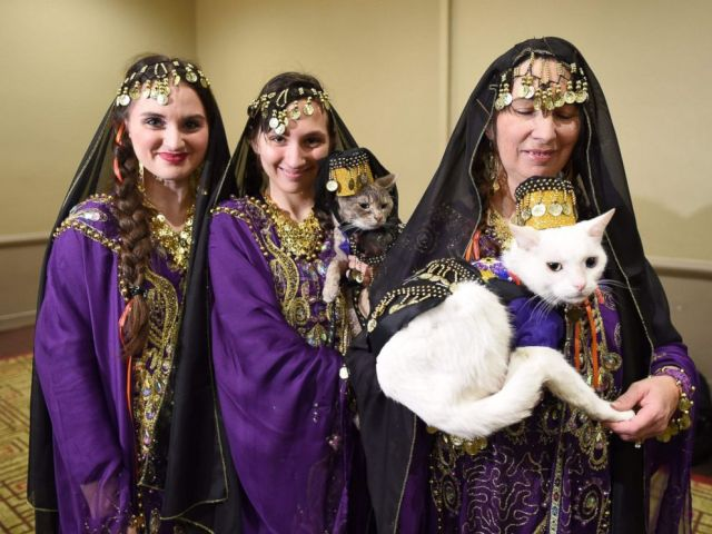 PHOTO: Women with their cats dressed in the fashion of Armenia pose during the 14th Annual New York Pet Fashion Show, Feb. 9, 2017.