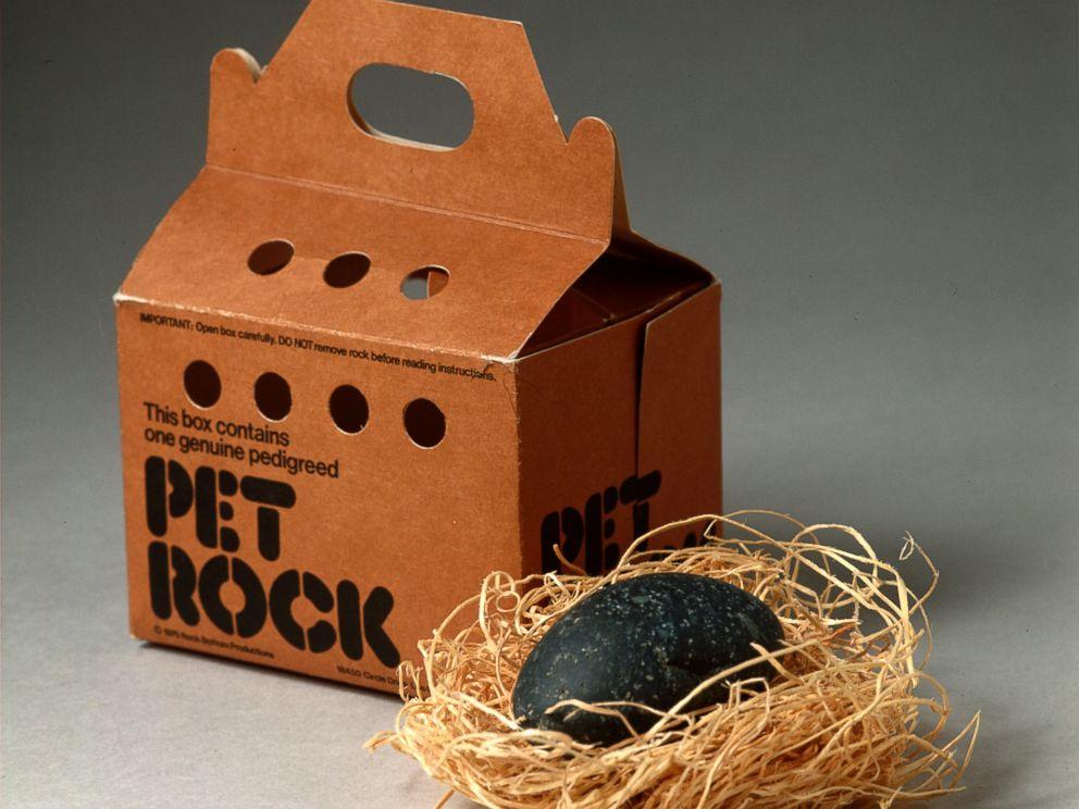 Image result for pet rock