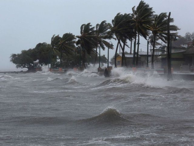 PHOTO: Palm trees buckle under winds and rain as Hurricane Irma slammed across islands in the northern Caribbean on Wednesday, in Fajardo, Puerto Rico Sept. 6, 2017.