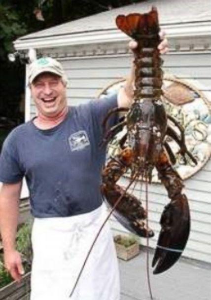 HT huge lobster jt 140719 7x10 608 18 Pound Lobster Returns to Sea