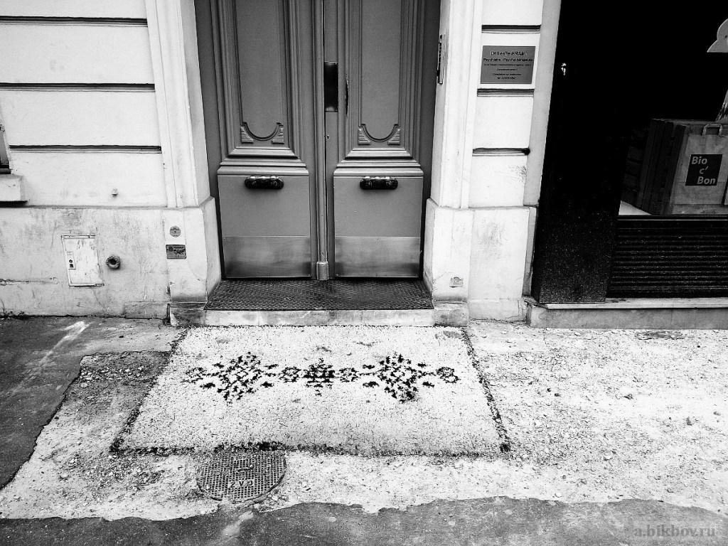 Alexander Bikbov: Paris-COVID, a study of signs of presence