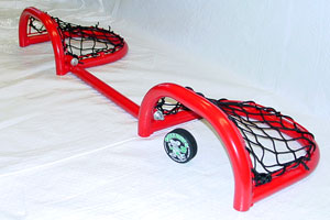 Pong Hockey Net