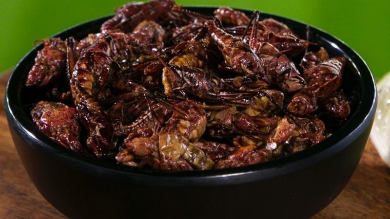 Seattle Mariners selling out of toasted grasshoppers at concession stand
