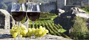 Le vin du mois en exclusivité - prix direct propriété