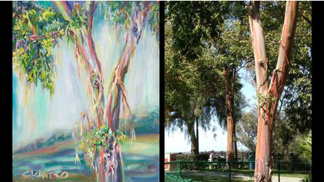 Obra de Antico y eucaliptus