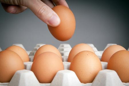 กินไข่วันละกี่ฟองดี