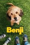 Image result for benji 2018 letterboxd