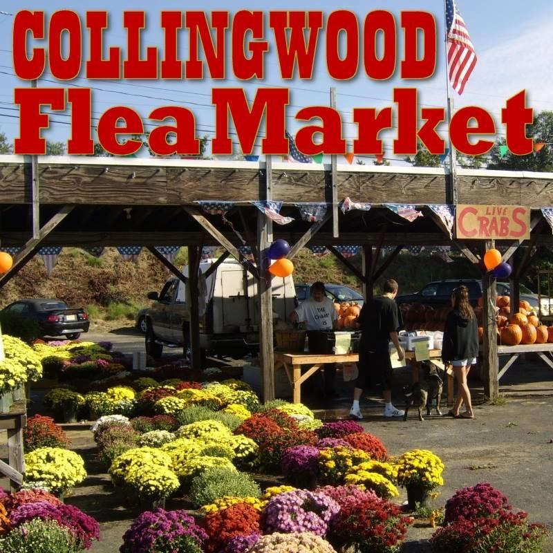 Collingwood Flea Market Auction
