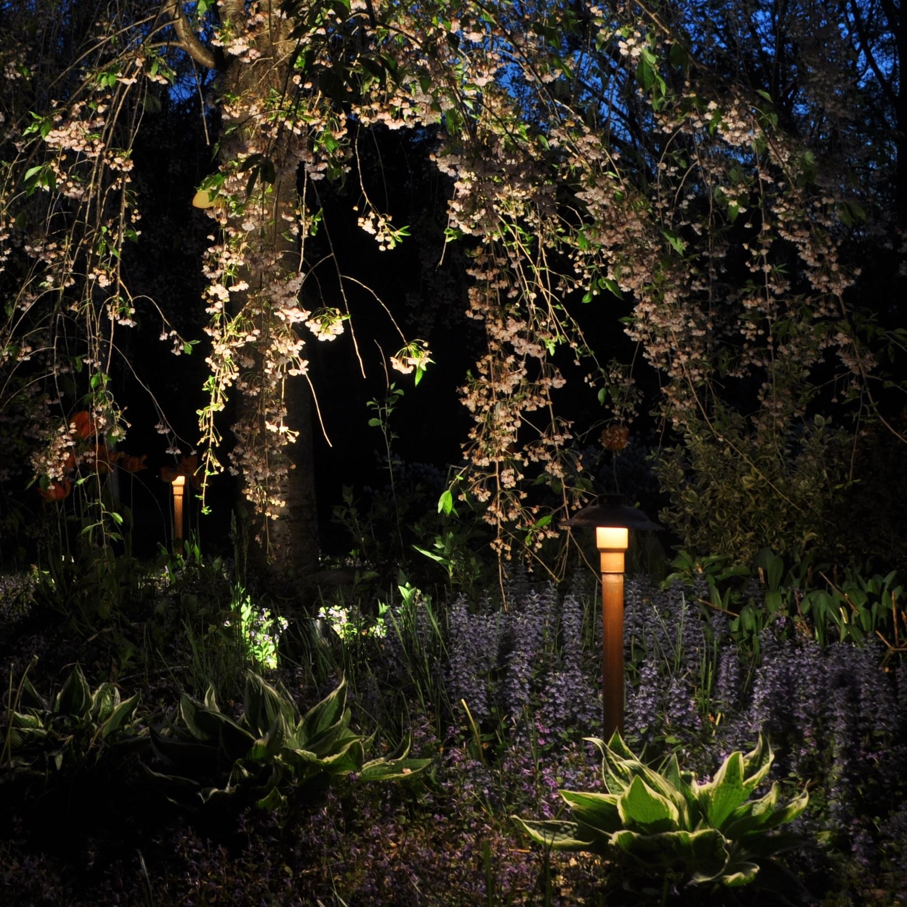 Firefly Landscape Lighting Blauvelt New York NY