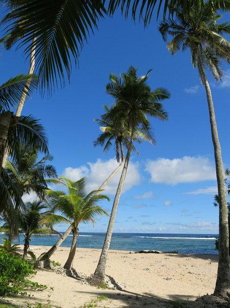 beach view: no description