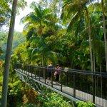 Gold Coast Hinterland Attractions Gold Coast Travel Guide Wotif Com