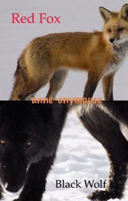 Red Fox Black Wolf 3 Wattpad