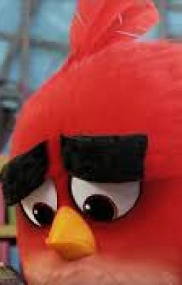 Angry Birds When We Dont Listen Chapter 1 If We Listened To Him Wattpad