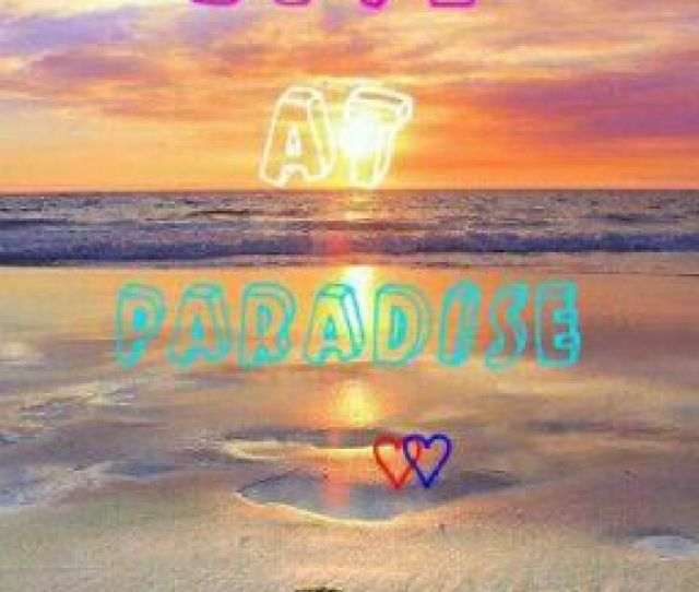 Love At Paradise Love Love Paradise X Reader