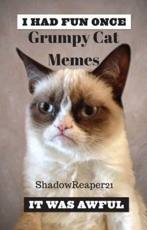 9 Magnificent Monday Cat Memes Petfinder