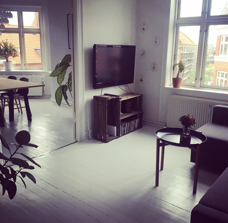 Big Appartment Near Nrrebro Station Apartments For Rent