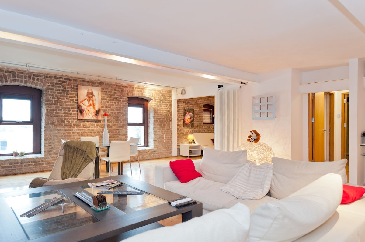 Central Luxurious Loft Apartment Apartments For Rent In