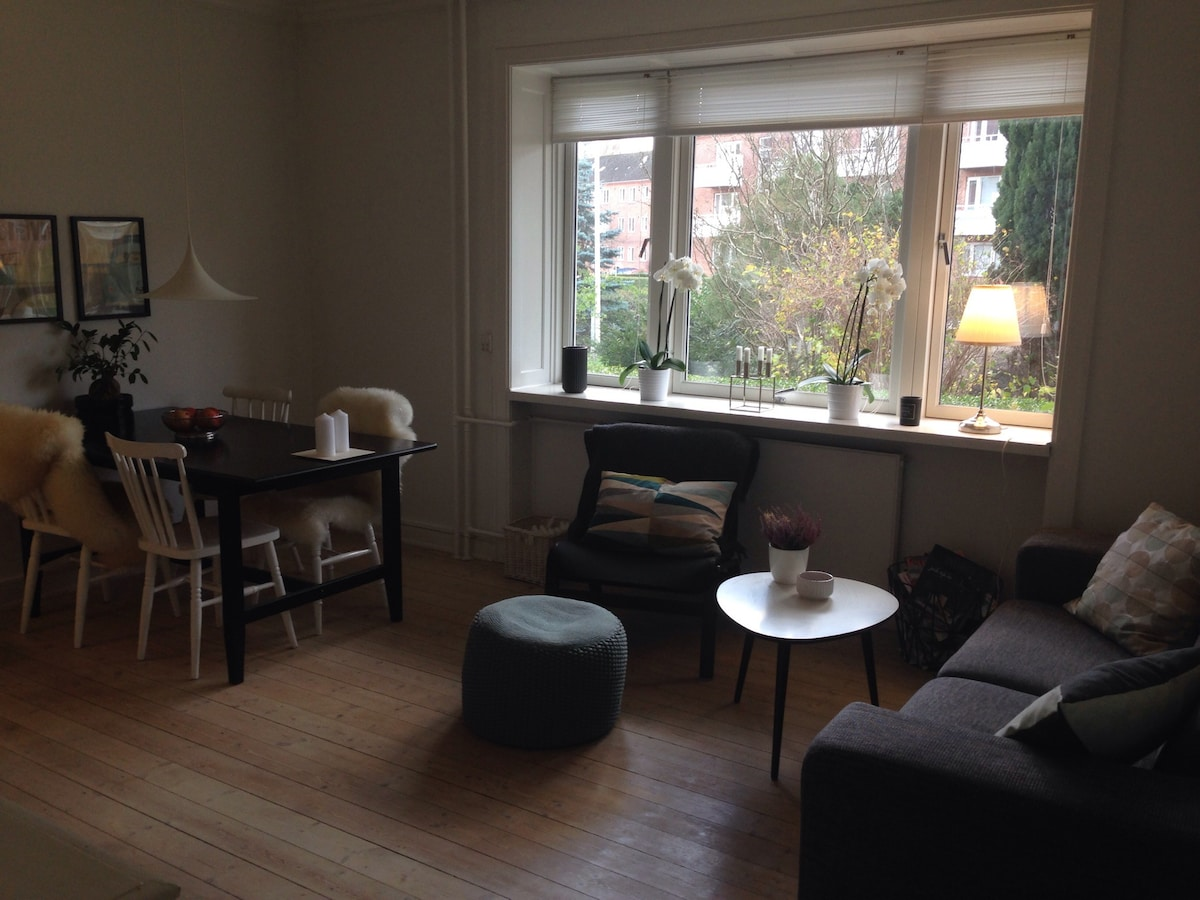 Charming And Bright Appartment Apartments For Rent In