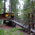 Redwood Treehouse Santa Cruz Mtns Casas En El Arbol En Renta En Watsonville California Estados Unidos