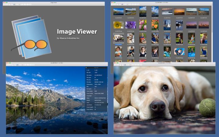1_Image_Viewer.jpg
