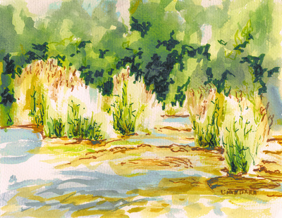 Hafren Reeds Stretched Canvas