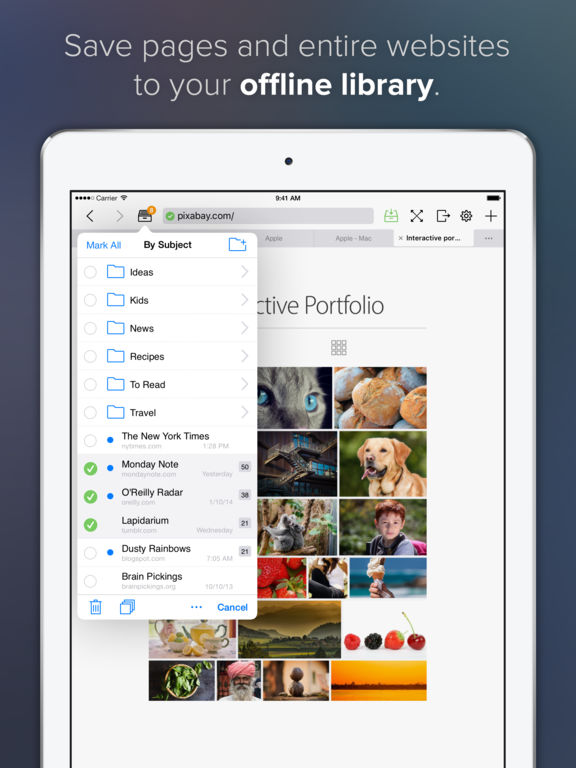 Offline Pages Screenshot