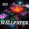 Zhi Hui LU - A Collection Of Wallpapers HD artwork