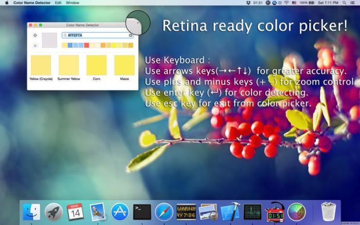 4_Color_Name_Detector.jpg