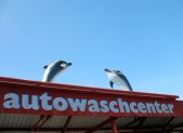 autowaschcenter