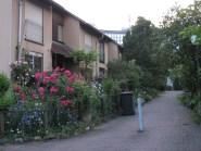 geisterstadt (18)