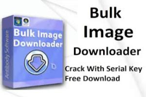 Bulk Image Downloader 5.34.0.0 Crack