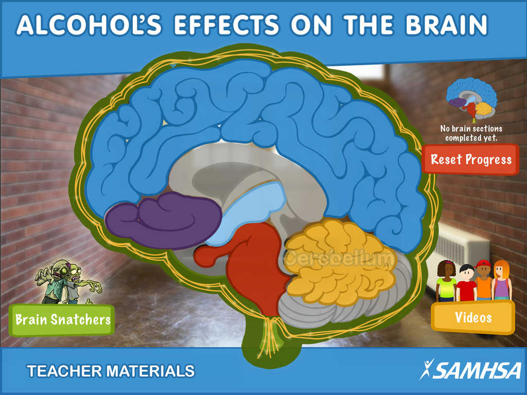 App Shopper Alcohol S Effects On The Brain A Reach Out Now Mobile Application Education