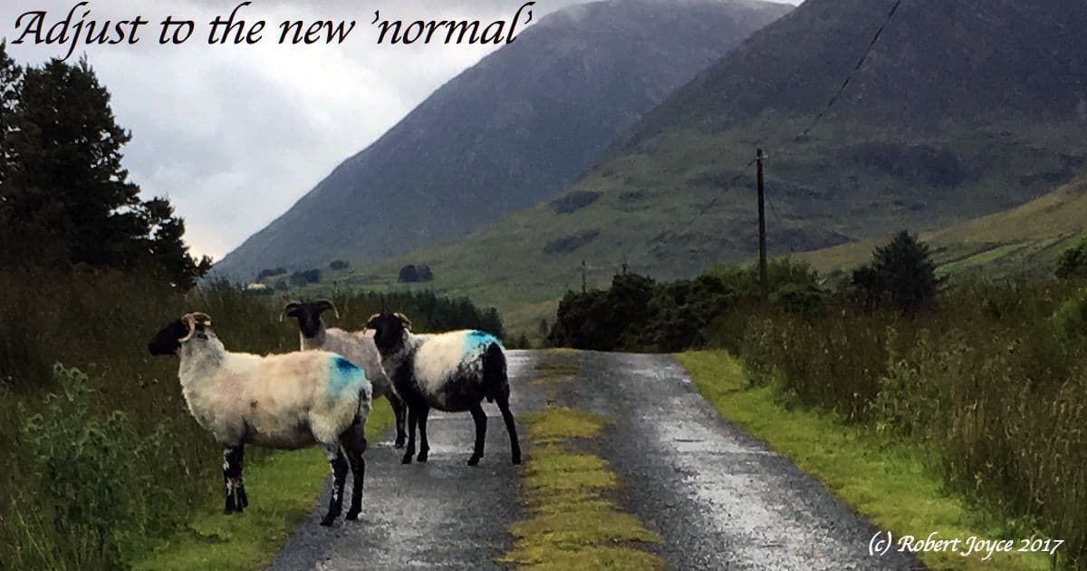 Adjust to the new normal