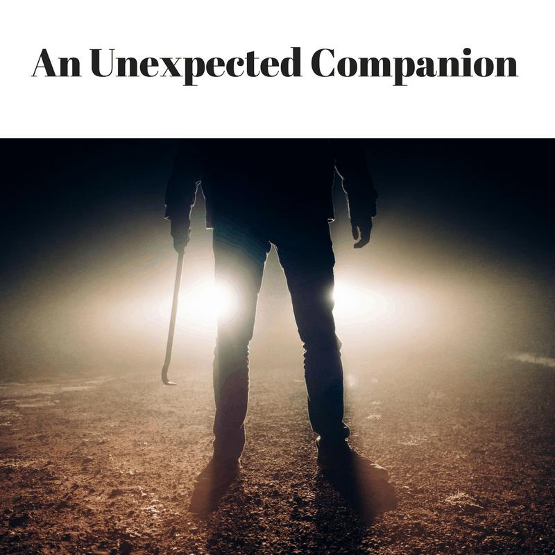 An Unexpected Companion