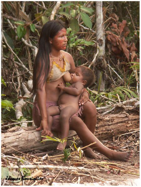 https://i2.wp.com/a398.idata.over-blog.com/451x599/1/35/79/37/BRESIL/village-indien-en-amazonie-4.jpg