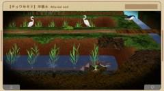 """自然科学App """"SOIL"""" かこさとし作 -地球 その中をさぐろう- より"""