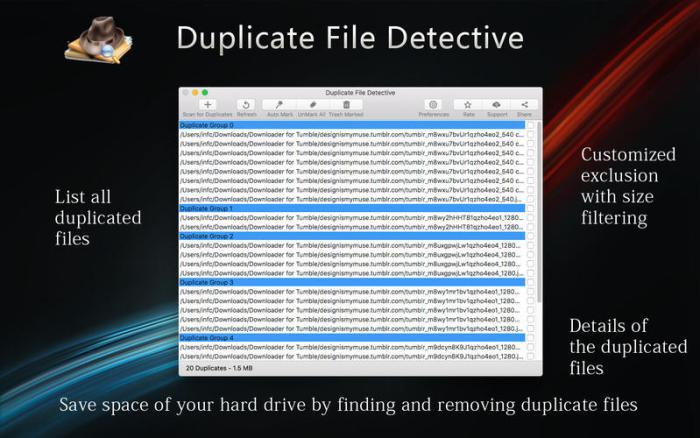 1_Duplicate_File_Detective.jpg