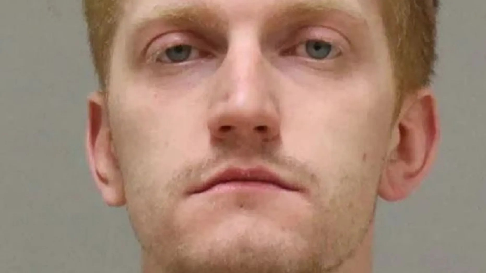 A man has been charged in the dismemberment of a woman in his apartment in western Michigan.
