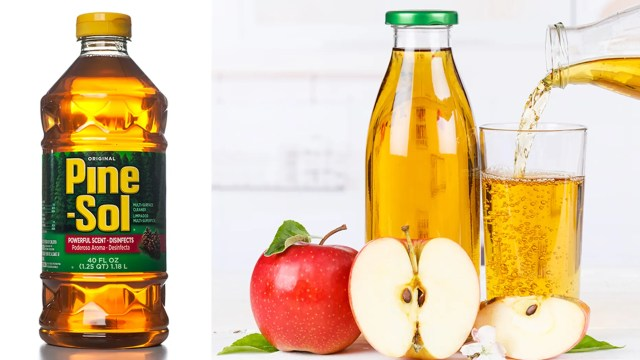 """A teaching assistant at a preschool in Hawaii accidentallygave children Pine-Sol cleaning fluid instead of apple juice, health officials said.<br data-cke-eol=""""1"""">"""