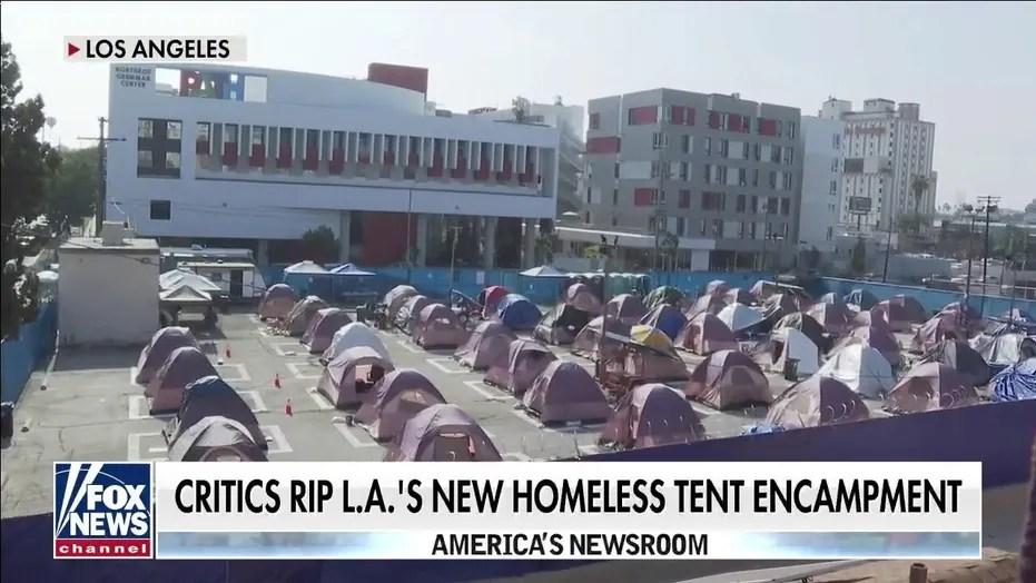 Sacramento mayor proposes mandatory housing for homeless amid statewide crisis