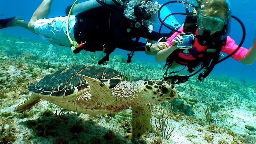 Florida Keys Shops Scuba