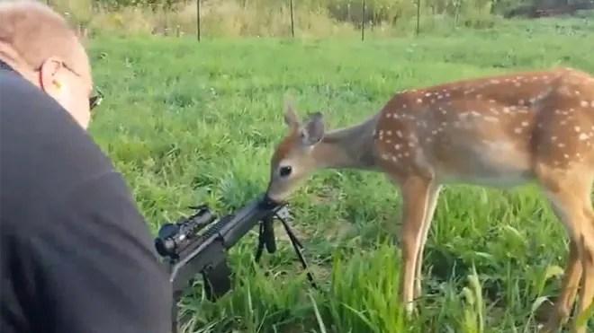 deer-hunters-pic.jpg