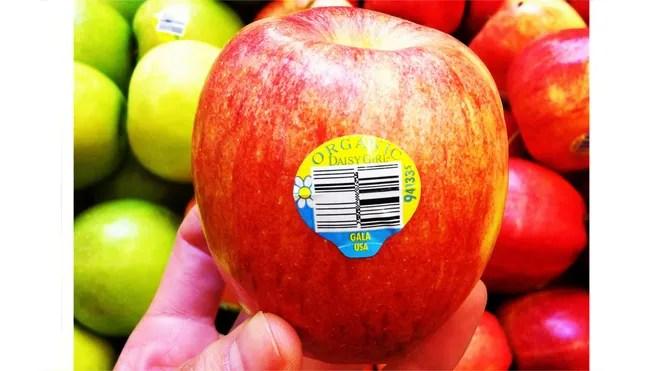 Organic red apple.JPG