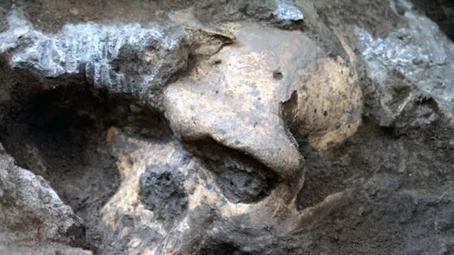 dmanisi-human-skull-1
