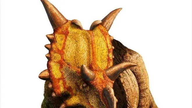 xenoceratops-horned-dinosaur