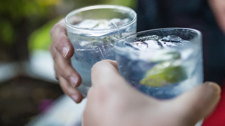 People who drink gin spend more money drunk online shopping than other alcohol drinkers.