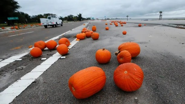Pumpkins are strewn about Highway 90 along the Gulf of Mexico in Pass Christian, Miss., in the aftermath of Hurricane Nate, Sunday, Oct. 8, 2017. (AP Photo/Gerald Herbert)