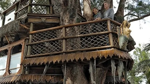 Lynn Tran and her husband Richard Hazen pose in their Australian pine treehouse Thursday, Jan. 4, 2018, in Holmes Beach, Fla. The couple is hoping the U.S. Supreme Court will hear their case after city and state officials ordered the treehouse removed. (AP Photo/Chris O'Meara)