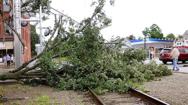 A maple tree was uprooted and toppled onto the railroad tracks on Main Street after a storm passed the area on Saturday, Aug. 4, 2018 in Webster, Mass. Officials say a tornado has touched down in the Massachusetts town near the Connecticut border. The National Weather Service confirmed the tornado but didn't know its strength yet. It caused structural damage to buildings and downed trees and poles. (Steve Lanava/Worcester Telegram & Gazette via AP)